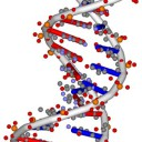 epigenetics2_thumb