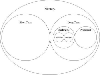 Schematic_memory