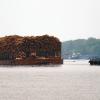 logging tug 14928302483_34103c9289_o cropped_1024w